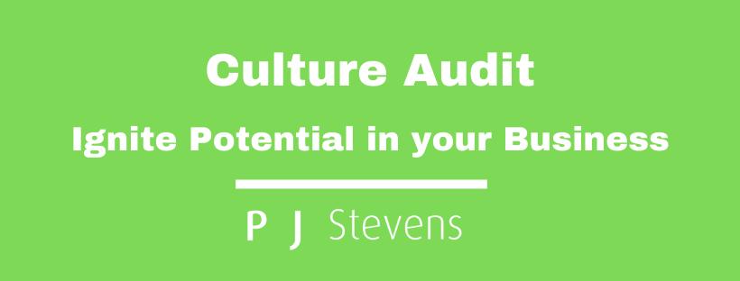 Culture Audit